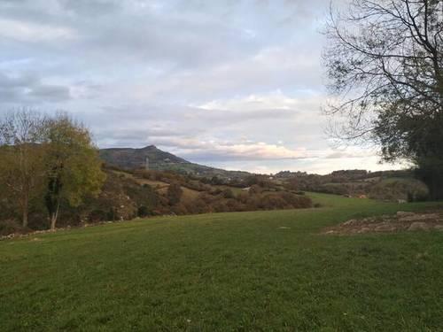 imagen 3 de Terreno para ganado en Oviedo