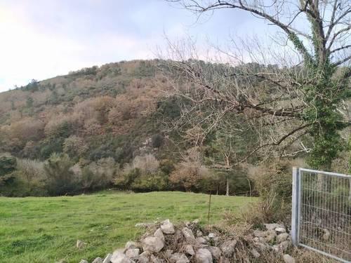 imagen 5 de Terreno para ganado en Oviedo