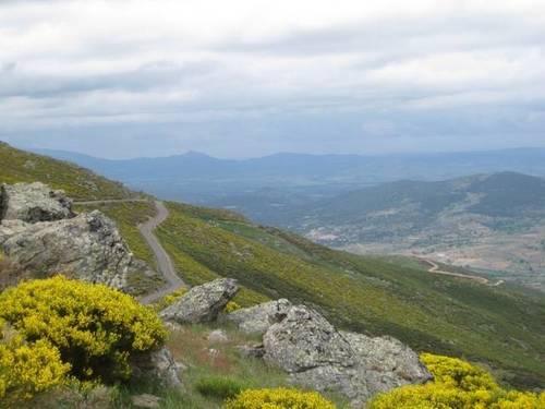 imagen 5 de Venta de dehesa en Gredos (Ávila)