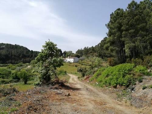 imagen 1 de Preciosa finca rústica en Arenas de San Pedro