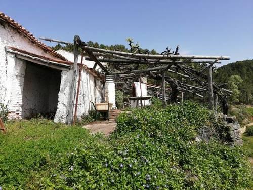 imagen 7 de Preciosa finca rústica en Arenas de San Pedro