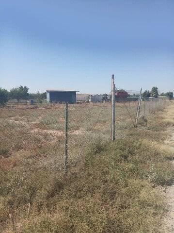 imagen 3 de Venta de huerto en Puebla De La Calzada