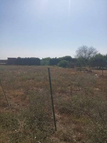 imagen 5 de Venta de huerto en Puebla De La Calzada