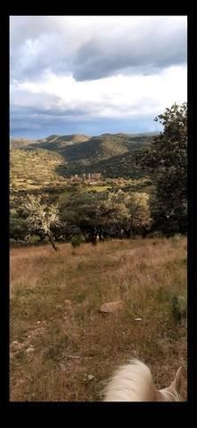 imagen 1 de Venta de Finca en Puebla Del Maestre