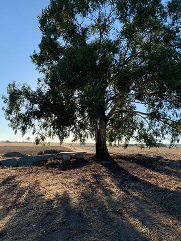 imagen 1 de Venta de terreno agrícola y/o ganadera en Badajoz.