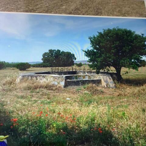 imagen 2 de Venta de terreno agrícola y/o ganadera en Badajoz.