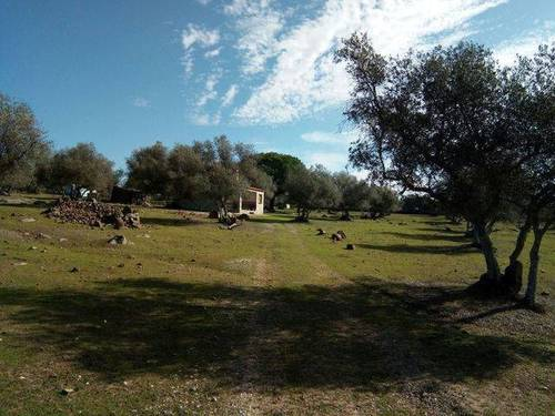 imagen 2 de Venta de una preciosa finca en Fregenal De La Sierra (Badajoz)