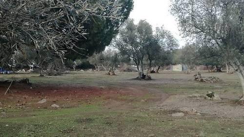 imagen 5 de Venta de una preciosa finca en Fregenal De La Sierra (Badajoz)