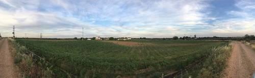 imagen 5 de Venta de terreno agrícola en Badajoz