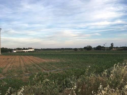 imagen 2 de Venta de terreno agrícola en Badajoz