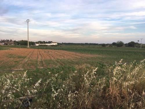 imagen 3 de Venta de terreno agrícola en Badajoz
