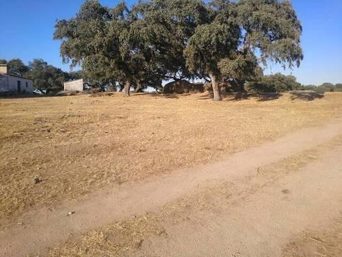 imagen 2 de Venta de parcela rústica en Alburquerque (Badajoz)