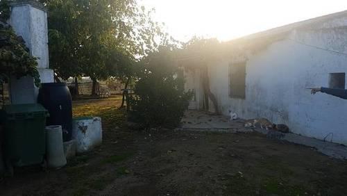 imagen 1 de Venta de finca rústica en Badajoz