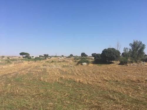 imagen 1 de Venta de terreno rústico en Quintana De La Serena (Badajoz)