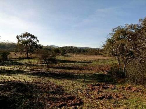 imagen 3 de Venta de finca agrícola en La Codosera (Badajoz)