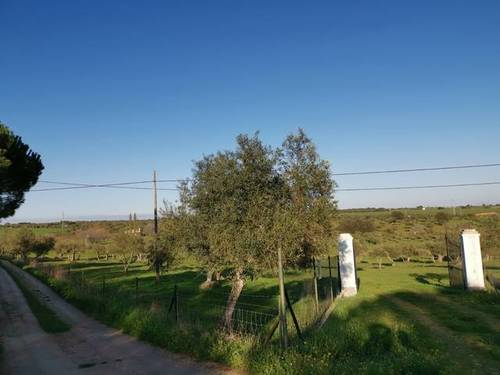 imagen 4 de Venta de terreno rústico en Fregenal De La Sierra (Badajoz)