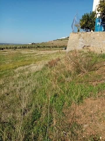 imagen 1 de Venta de parcela rústica en Castuera (Badajoz)