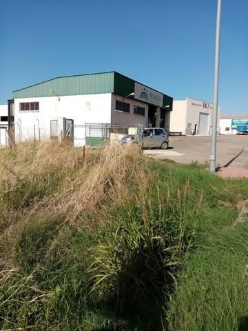 imagen 5 de Venta de parcela rústica en Castuera (Badajoz)