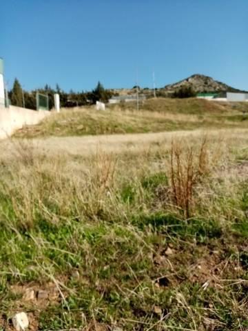 imagen 6 de Venta de parcela rústica en Castuera (Badajoz)