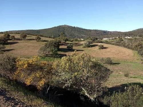 imagen 4 de Venta de fincas en La Codosera (Badajoz)