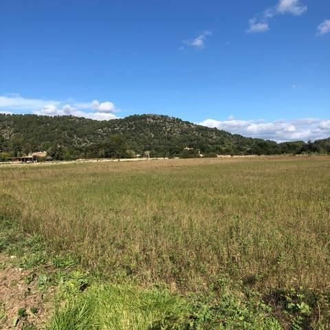 imagen 1 de Venta de finca en Pollença/Pollensa (Mallorca)