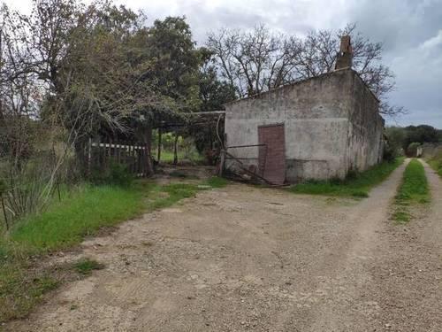 imagen 2 de Venta de parcela en Búger (Mallorca)
