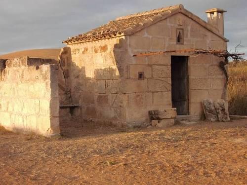 imagen 1 de Venta de finca con caseta y pozo en Petra (Mallorca)