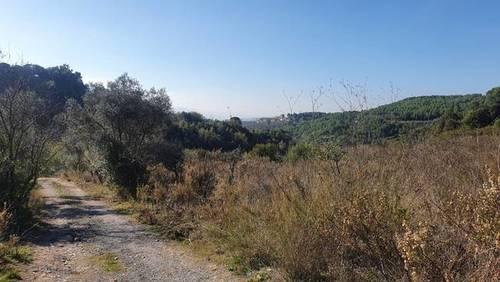 imagen 3 de Venta de terreno en Castellbisbal (Barcelona)