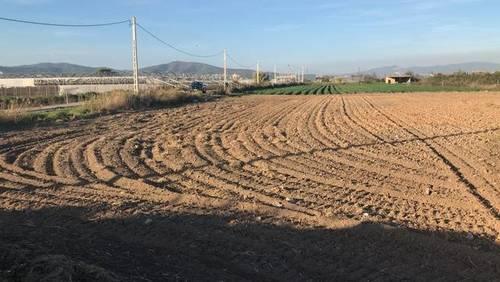 imagen 1 de Venta de finca en Viladecans (Barcelona)
