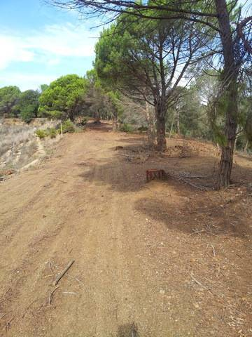 imagen 2 de Venta de estupendo terreno en Canet de mar (Barcelona)