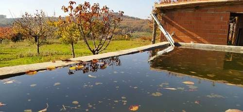 imagen 1 de Venta de finca de cerezos en Torremenga (Cáceres)