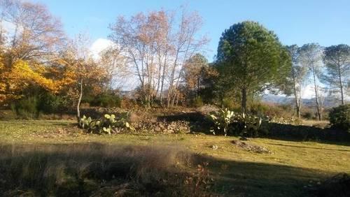 imagen 1 de Venta de magnífico terreno en Cuacos de Yuste (Cáceres)