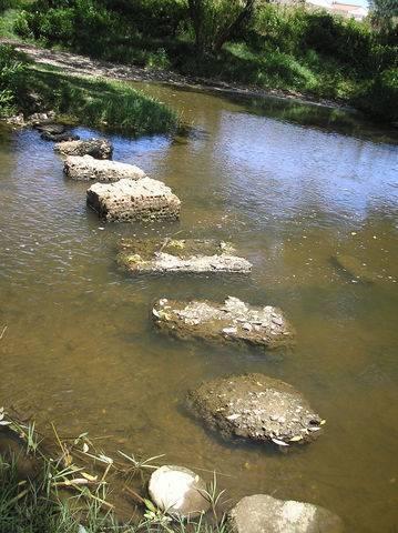 imagen 3 de Venta de huerta junto al río en Moraleja (Cáceres)