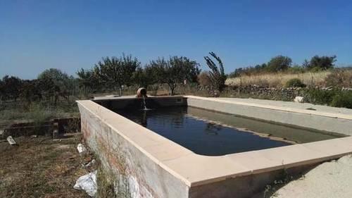 imagen 3 de Venta de  finca de frutales Arroyomolinos de la Vera (Cáceres)