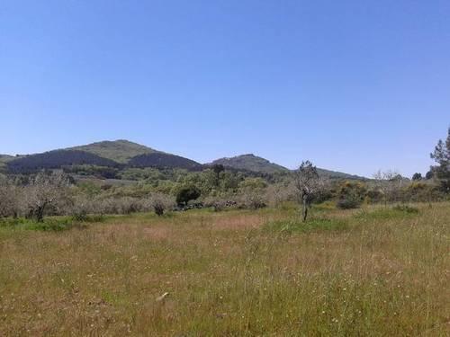 imagen 3 de Venta de parcela en Santibáñez el Alto (Cáceres)
