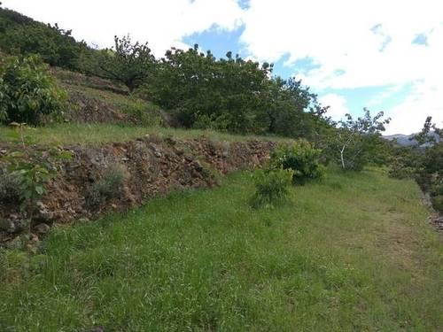 imagen 1 de Venta de finca en producción en Valle del Jerte (Cáceres)