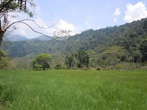 imagen 1 de Venta de magnífica finca en Baños de Montemayor (Cáceres)