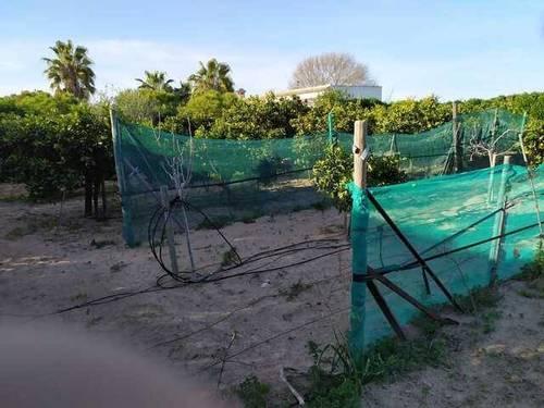 imagen 3 de Venta de terreno en con casa en Chipiona (Cádiz)