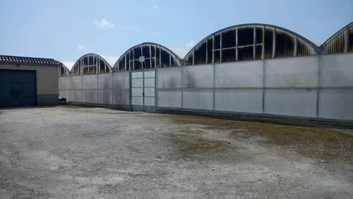 imagen 3 de Venta de finca con invernadero en Chipiona (Cádiz)