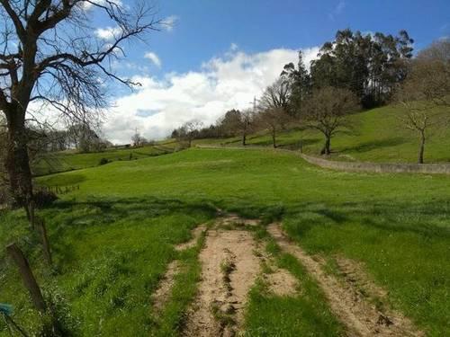 imagen 2 de Venta de finca con ermita en Castañeda (Cantabria)