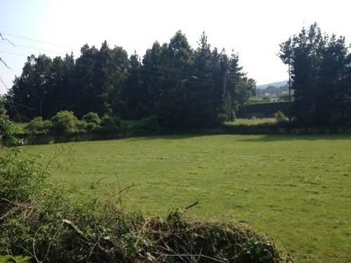 imagen 1 de Venta de magnífica finca en Molledo (Cantabria)