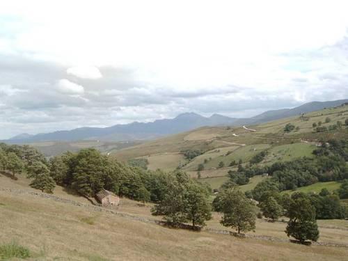 imagen 2 de Venta de fincas en San Pedro del Romeral (Cantabria)