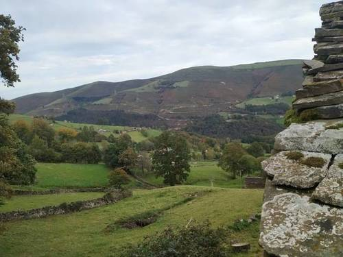 imagen 1 de Venta de estupenda finca con cabaña en San Pedro del Romeral (Cantabria)