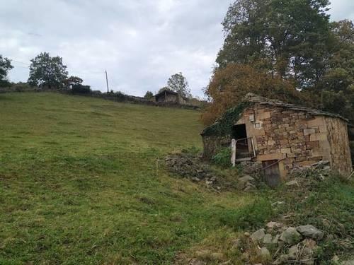 imagen 2 de Venta de estupenda finca con cabaña en San Pedro del Romeral (Cantabria)