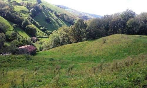 imagen 1 de Venta de preciosa finca en Selaya (Cantabria)