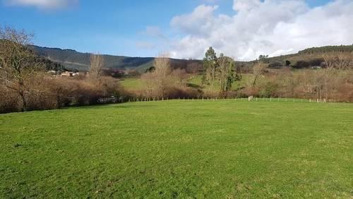 imagen 2 de Venta de magnífico prado en Castro Urdiales (Cantabria)