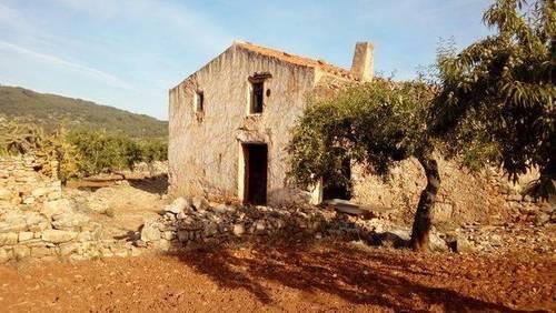 imagen 1 de Venta de finca de almendros en Ribera de Cabanes (Castellón)