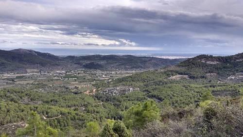 imagen 1 de Venta de finca en Borriol (Castellón)