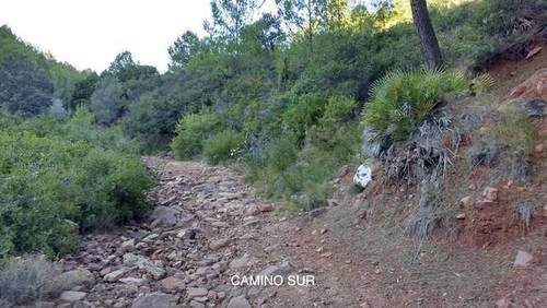 imagen 2 de Venta de finca en Borriol (Castellón)