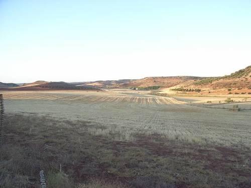 imagen 2 de Venta de gran terreno en Montiel (Ciudad Real)